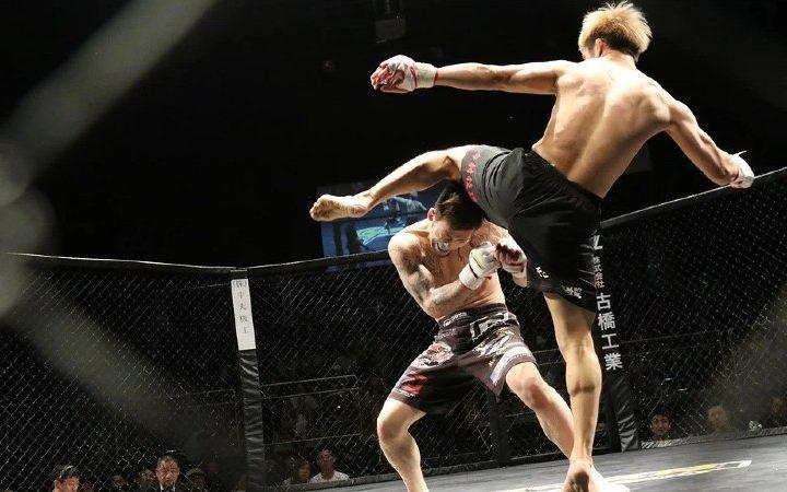 ¿Por qué es tan popular la UFC?